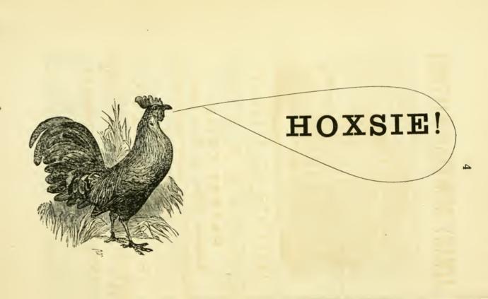 Hoxsie.png